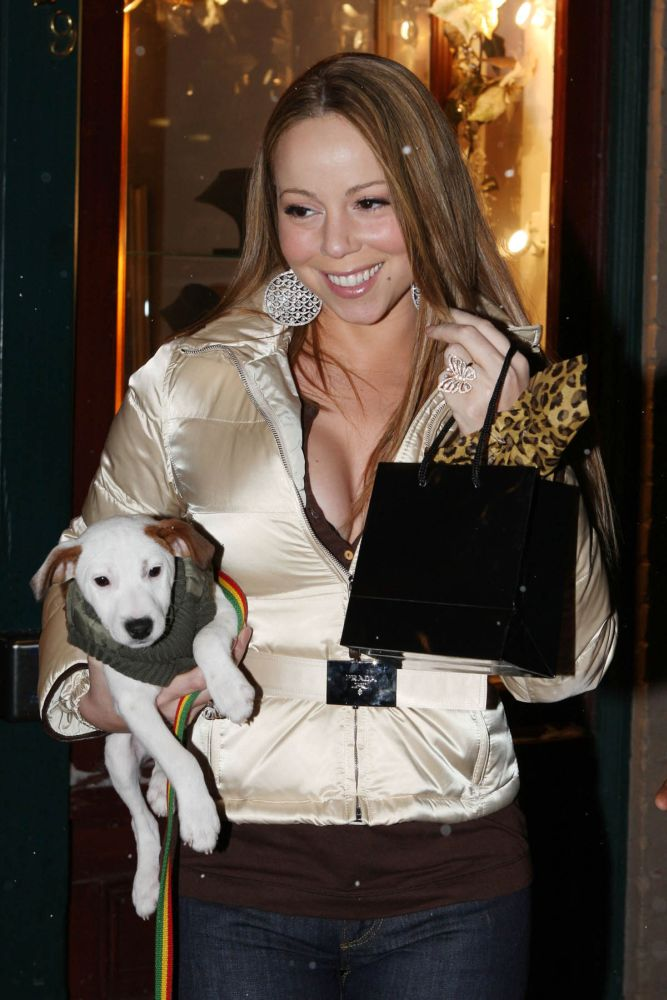 19174, ASPEN, COLORADO - Sunday December 23 2007. Mariah Carey shows off her puppy as she slips out of her parent's jewellery store in downtown Aspen. The pop diva spent five hours inside the Joan Boyce store sipping cocktails and trying on jewellery with her family and friends before heading back to her lodgings. As Mariah left, she slipped on the icy sidewalk, but luckily her burly minder was there to save an embarrassing fall. Photograph: Perkins, Thompsett, PacificCoastNews.com ***FEE MUST BE AGREED PRIOR TO USAGE*** UK OFFICE: +44 131 225 3333/3322 US OFFICE: 1 310 261 9676