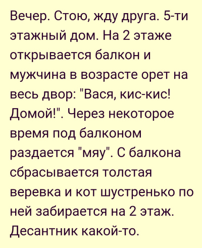kot_desantnik-