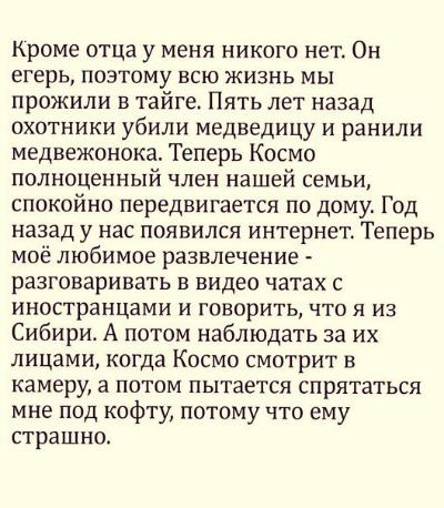 medvezhonok