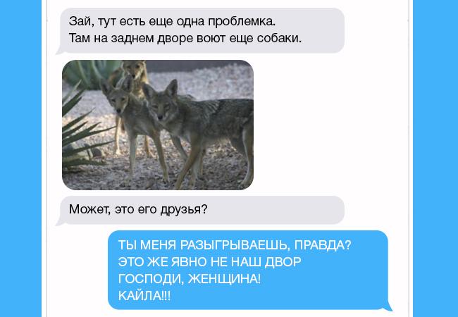 rsas-aukd-zhena-napisala-muzhu-chto-nashla-sobachku-kogda-ponyal-chto-eto-za-zhivotnoe-edva-ne-lishilsya-dara-rechi_c0c85a074448312ce508b6b18cec6242