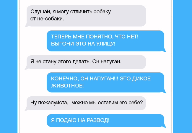 rsas-aukd-zhena-napisala-muzhu-chto-nashla-sobachku-kogda-ponyal-chto-eto-za-zhivotnoe-edva-ne-lishilsya-dara-rechi_e0279e9911c47063e3df13b634ed9f15