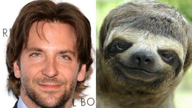 1508870532_bradley-cooper-sloth-iambored-pro-1