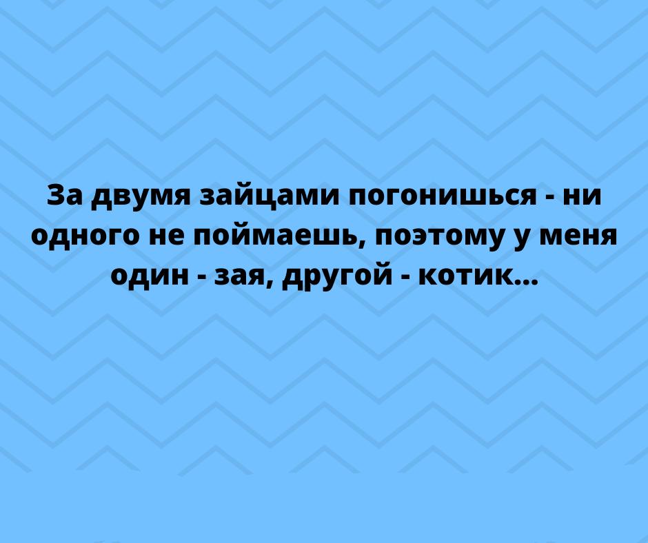 cidcsonv