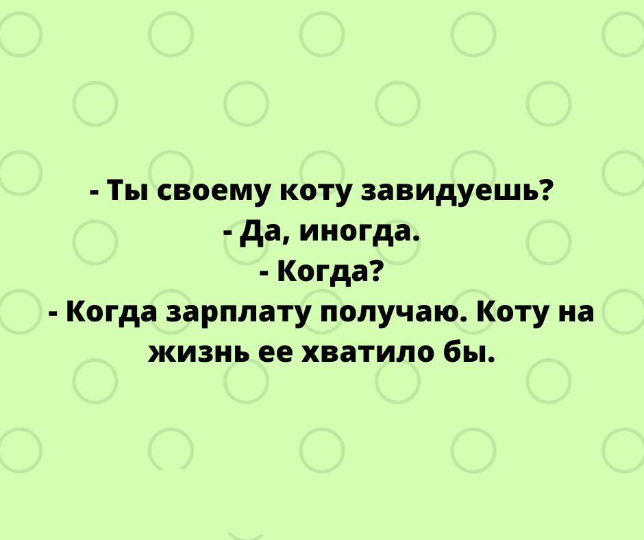 czzxzby