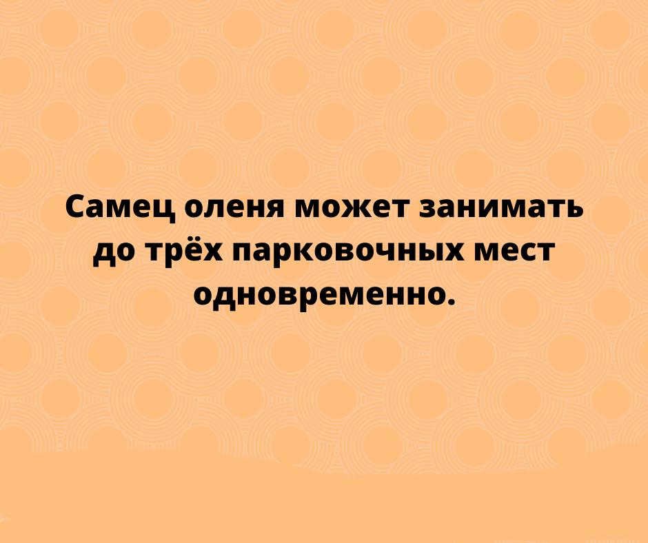 smjazkw